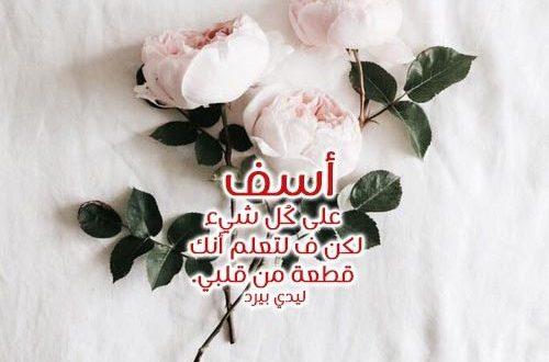صورة مسجات اعتذار للحبيب , لو حبيبك زعلان هيسامحك باجمل كلمات الاسف والاعتذار