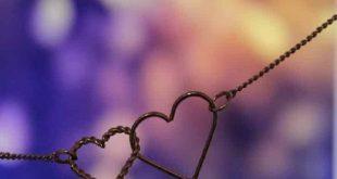 حكم واقوال عن الحب , اجمل حكم واقوال عن الحب لن تنسها
