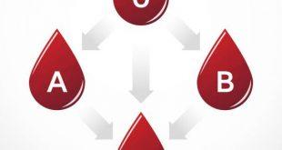 صورة بحث عن فصائل الدم , مالا تعرفه عن فصائل الدم