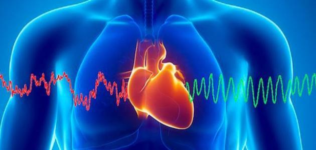 صور ما الفرق بين القلب والفؤاد , هل هناك فرق بين كلمة الفوائد والقلب
