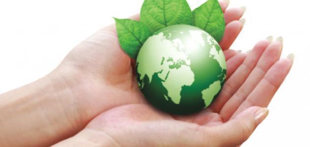 صورة موضوع حول البيئة , بحث مكثف ومختصر عن البيئة والحفاظ عليها 1538 4