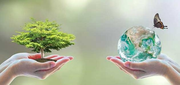 صورة موضوع حول البيئة , بحث مكثف ومختصر عن البيئة والحفاظ عليها 1538 7
