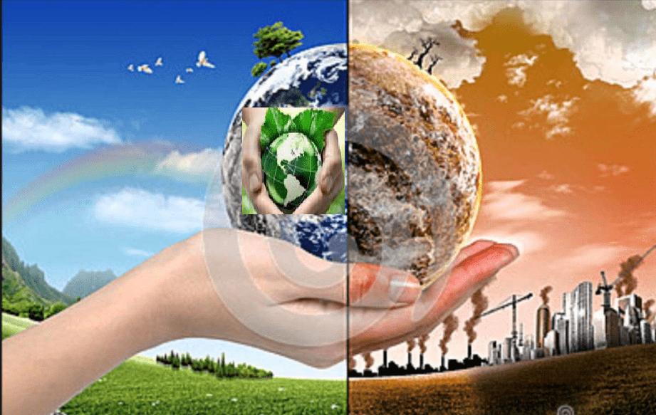 صورة موضوع حول البيئة , بحث مكثف ومختصر عن البيئة والحفاظ عليها 1538