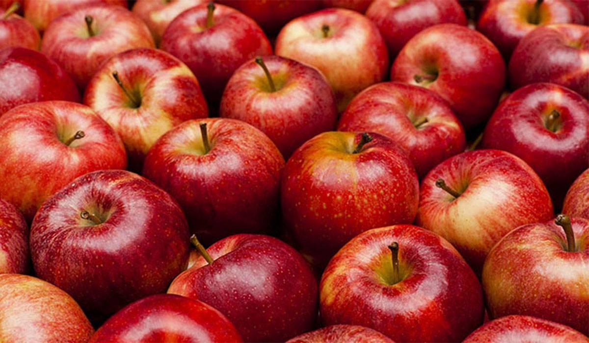 صورة فوائد التفاح الاحمر , للتفاح الاحمر فوائد عديدة تعرف عليها