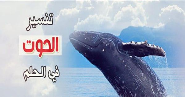 صورة تفسير رؤيا الحوت , رؤية الحوت في المنام