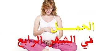 الحمل بالشهر الرابع , معلومات عن الحمل بالشهر الرابع