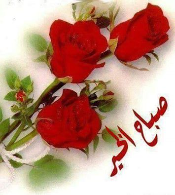 صورة صور روعه صباح الخير , الصباحيات متبقاش صباحيات عند حبيبك الا مع الكلام الحلو دا
