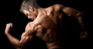 صورة صور اجسام رجال , احصل على جسم رياضي 3215 12 310x165