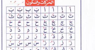 صورة الحركات في اللغة العربية , حركات التشكيل في لغتنا العربية