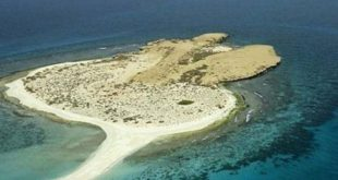 صورة بالصور جزيرة فرسان , كا تعرفه عن جزر فرسان