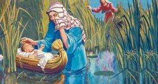 صورة ما اسم ام موسى عليه السلام , معلومة دينية ستدهشك معرفة قصتها