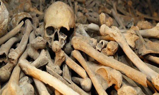 صورة العظام في المنام , تفسير وجود العظام في الاحلام