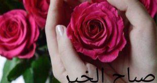 صورة صور صباح ورد , اجمل صباح الخير والورد