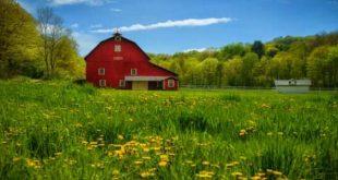 صورة موضوع تعبير عن جمال القرية , اجمل قريه في البلاد