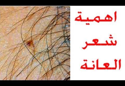 صورة ما فائدة شعر الابط والعانه , ماذا يعني ازالة شعر الابط والعانه