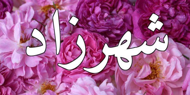 صورة ما معنى اسم شهرزاد , اسم شهرزاد في القاموس