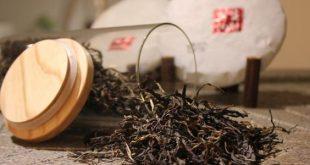 صورة فوائد الشاي الاسود للشعر , اهم فوائد الشاي للشعر المقصف