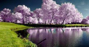 صورة روائع الصور الطبيعية , اجمل المناظر الطبيعية