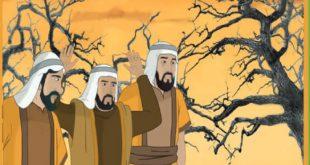 صورة قصة الاخوة الثلاثة , قصص و عبرة