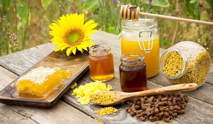 صورة فوائد عسل النحل للاطفال , مميزات العسل النحل للاطفال