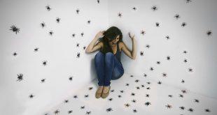 تفسير الحشرات في المنام , هل تهاجمك الحشرات فى منامك