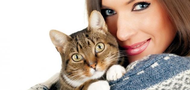 صورة اضرار القطط على الحامل , اذا كانت لديك قطة ماذا تفعل