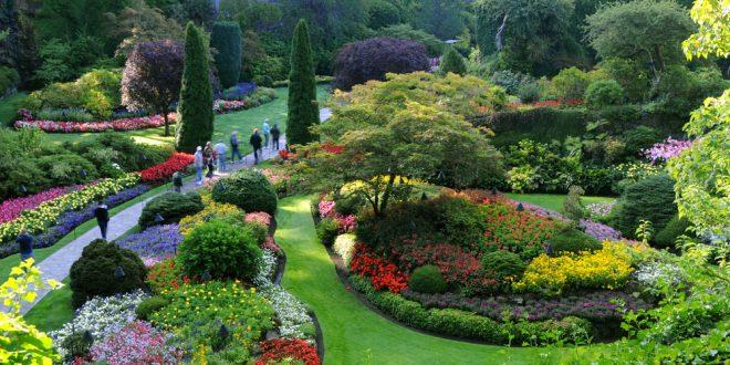صورة تعبير عن الحدائق , موضوع مبهج عن المساحات الخضراء 1916 2
