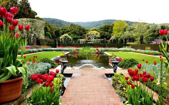 صورة تعبير عن الحدائق , موضوع مبهج عن المساحات الخضراء 1916 5