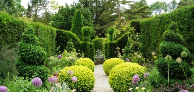 صورة تعبير عن الحدائق , موضوع مبهج عن المساحات الخضراء 1916 6