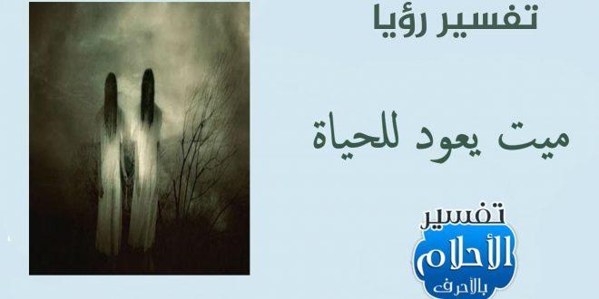 صورة تفسير حلم عودة الميت الى الحياة , رؤيه الميت فى المنام حى ما الرساله